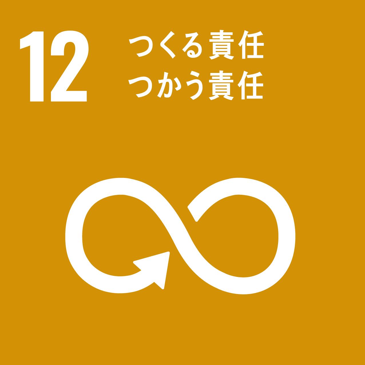 sdg_icon_12_responsibility